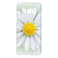 Art Daisy Flower Art Flower Deco Samsung Galaxy S8 Plus Hardshell Case  by Celenk