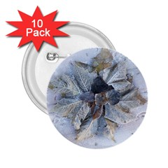Winter Frost Ice Sheet Leaves 2 25  Buttons (10 Pack)  by Celenk