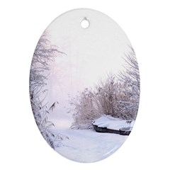 Winter Snow Ice Freezing Frozen Oval Ornament (two Sides) by Celenk