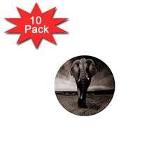 Elephant Black And White Animal 1  Mini Magnet (10 Pack)  by Celenk