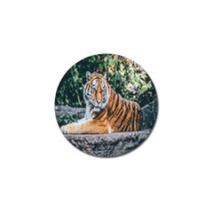 Animal Big Cat Safari Tiger Golf Ball Marker (10 Pack) by Celenk