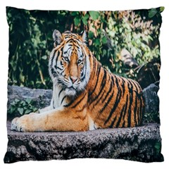 Animal Big Cat Safari Tiger Large Cushion Case (two Sides) by Celenk