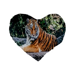 Animal Big Cat Safari Tiger Standard 16  Premium Flano Heart Shape Cushions by Celenk