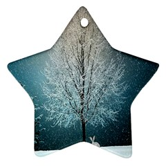 Winter Wintry Snow Snow Landscape Ornament (star) by Celenk