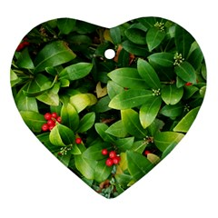 Christmas Season Floral Green Red Skimmia Flower Ornament (heart)