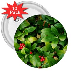 Christmas Season Floral Green Red Skimmia Flower 3  Buttons (10 Pack)  by yoursparklingshop