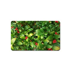 Christmas Season Floral Green Red Skimmia Flower Magnet (name Card) by yoursparklingshop