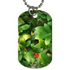 Christmas Season Floral Green Red Skimmia Flower Dog Tag (one Side) by yoursparklingshop