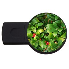 Christmas Season Floral Green Red Skimmia Flower Usb Flash Drive Round (4 Gb) by yoursparklingshop