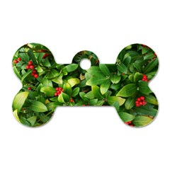 Christmas Season Floral Green Red Skimmia Flower Dog Tag Bone (one Side) by yoursparklingshop