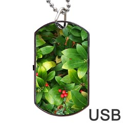 Christmas Season Floral Green Red Skimmia Flower Dog Tag Usb Flash (one Side) by yoursparklingshop