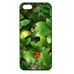 Christmas Season Floral Green Red Skimmia Flower Apple Iphone 5 Seamless Case (black) by yoursparklingshop