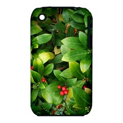 Christmas Season Floral Green Red Skimmia Flower Iphone 3s/3gs by yoursparklingshop