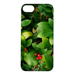 Christmas Season Floral Green Red Skimmia Flower Apple Iphone 5s/ Se Hardshell Case by yoursparklingshop