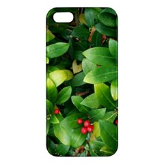 Christmas Season Floral Green Red Skimmia Flower Iphone 5s/ Se Premium Hardshell Case by yoursparklingshop