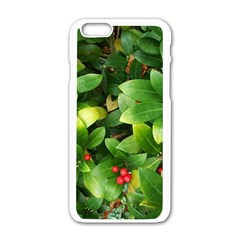 Christmas Season Floral Green Red Skimmia Flower Apple Iphone 6/6s White Enamel Case by yoursparklingshop