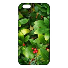 Christmas Season Floral Green Red Skimmia Flower Iphone 6 Plus/6s Plus Tpu Case by yoursparklingshop