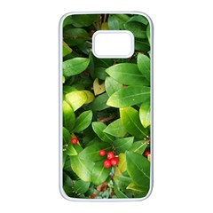 Christmas Season Floral Green Red Skimmia Flower Samsung Galaxy S7 White Seamless Case by yoursparklingshop