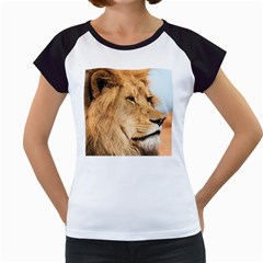 Big Male Lion Looking Right Women s Cap Sleeve T