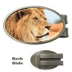 Big Male Lion Looking Right Money Clips (oval)  by Ucco