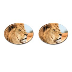 Big Male Lion Looking Right Cufflinks (oval)