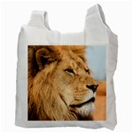 Big male lion looking right Recycle Bag (Two Side)  Back