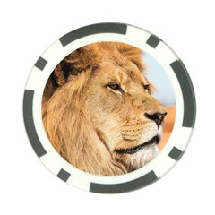 Big Male Lion Looking Right Poker Chip Card Guard (10 Pack)