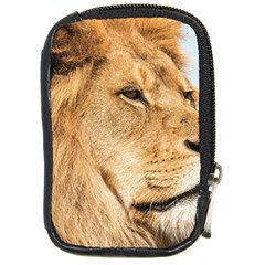 Big Male Lion Looking Right Compact Camera Cases