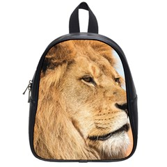 Big Male Lion Looking Right School Bag (small) by Ucco
