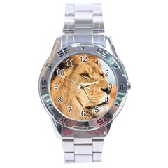 Big Male Lion Looking Right Stainless Steel Analogue Watch