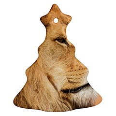 Big Male Lion Looking Right Christmas Tree Ornament (two Sides) by Ucco