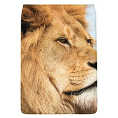 Big Male Lion Looking Right Flap Covers (l)  by Ucco