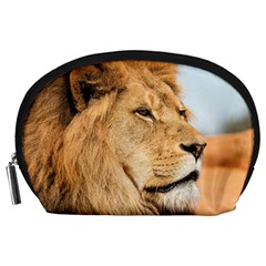 Big Male Lion Looking Right Accessory Pouches (large)  by Ucco
