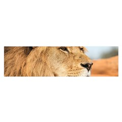 Big Male Lion Looking Right Satin Scarf (oblong)