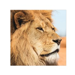 Big Male Lion Looking Right Small Satin Scarf (square)