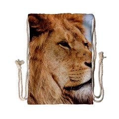 Big Male Lion Looking Right Drawstring Bag (small) by Ucco