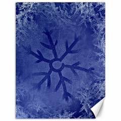 Winter Hardest Frost Cold Canvas 12  X 16   by Celenk