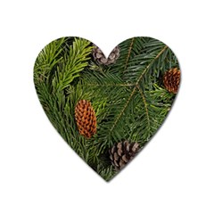 Branch Christmas Cone Evergreen Heart Magnet by Celenk