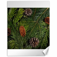 Branch Christmas Cone Evergreen Canvas 12  X 16   by Celenk