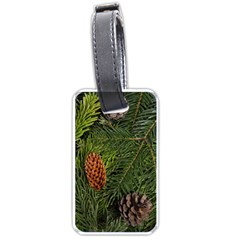 Branch Christmas Cone Evergreen Luggage Tags (one Side)  by Celenk