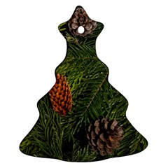 Branch Christmas Cone Evergreen Ornament (christmas Tree)