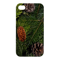 Branch Christmas Cone Evergreen Apple Iphone 4/4s Premium Hardshell Case by Celenk