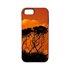 Trees Branches Sunset Sky Clouds Apple Iphone 5 Classic Hardshell Case (pc+silicone) by Celenk