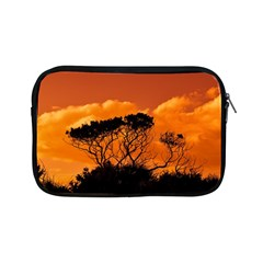 Trees Branches Sunset Sky Clouds Apple Ipad Mini Zipper Cases by Celenk