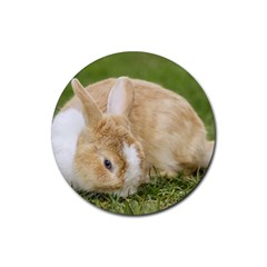 Beautiful Blue Eyed Bunny On Green Grass Rubber Round Coaster (4 Pack)  by Ucco