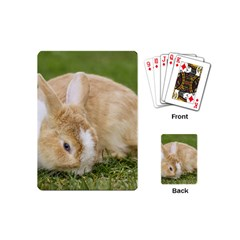 Beautiful Blue Eyed Bunny On Green Grass Playing Cards (mini)  by Ucco