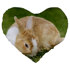 Beautiful Blue Eyed Bunny On Green Grass Large 19  Premium Flano Heart Shape Cushions