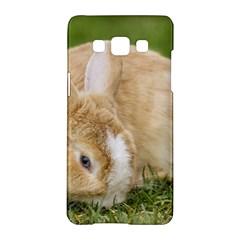 Beautiful Blue Eyed Bunny On Green Grass Samsung Galaxy A5 Hardshell Case  by Ucco