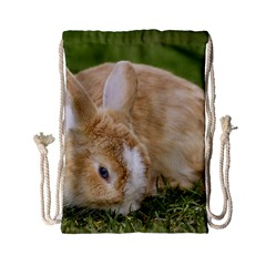 Beautiful Blue Eyed Bunny On Green Grass Drawstring Bag (small) by Ucco