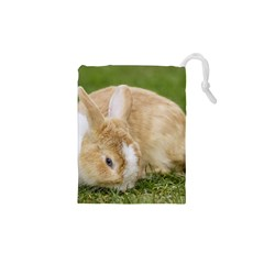 Beautiful Blue Eyed Bunny On Green Grass Drawstring Pouches (xs)  by Ucco